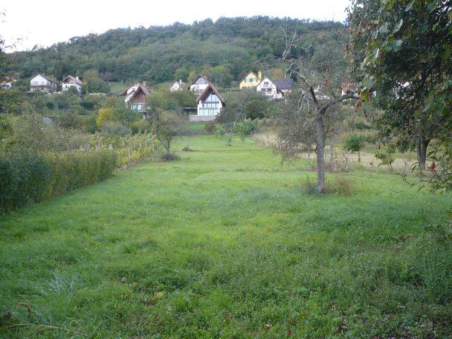 Kiadó Telek, 8264 SZIGLIGET, Üres